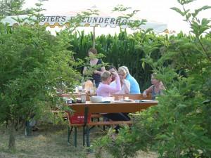 Picknick unterm Hollerbusch