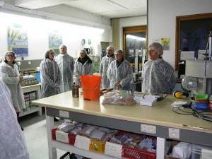 Im Labor entscheidet sich welche Charge in welches Silo kommt.